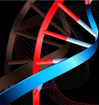 DNA Stock Vector - 4659542
