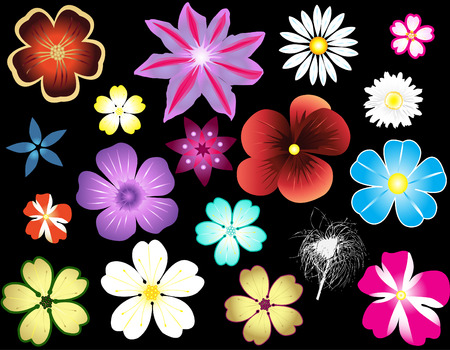 Different types of flowers Stock Vector - 4937220
