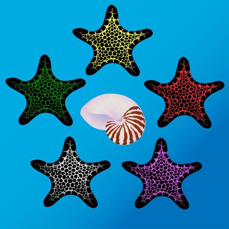 seashore: five colorful starfish and sea shell