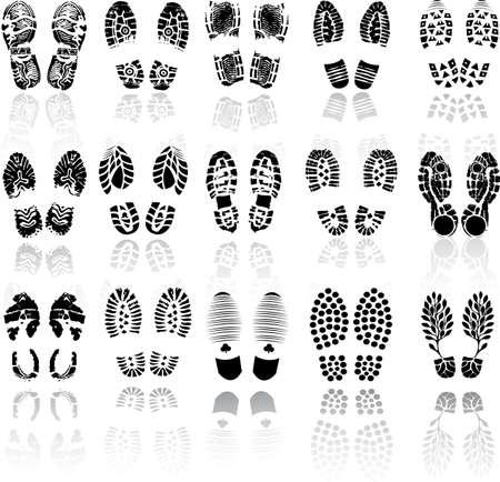 zapato: Ilustraci�n del vector de la impresi�n de zapatos distintos Vectores