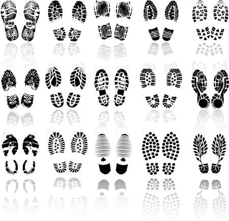 imprints: Vector illustration of various shoe print