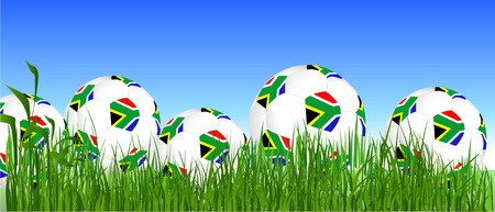 qualified: World Cup South Africa balls on the grass