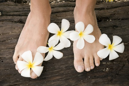 alba: Woman legs with flowers Plumeria alba on Thailand