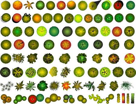 A set van treetop symbolen, voor architecturale of landschap design  Stock Illustratie