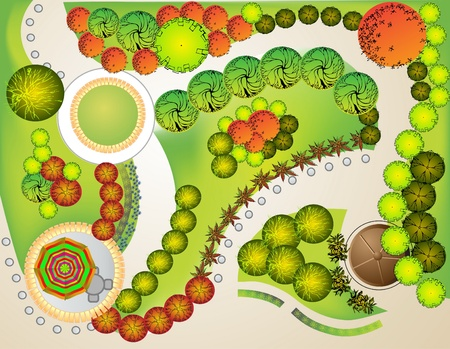 Colored Plan of garden decorative plants