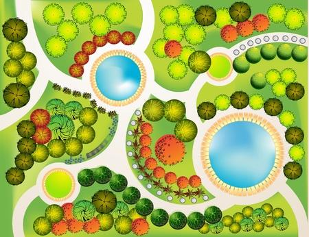 Plan coloré des plantes de jardin décoratifs Vecteurs