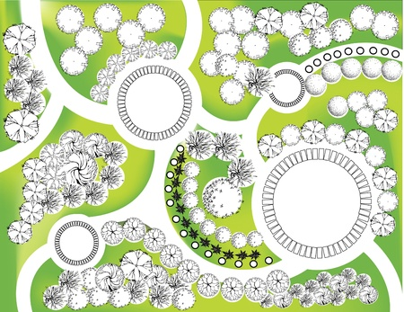 piano di progetto: Piano colorato di piante ornamentali da giardino Vettoriali