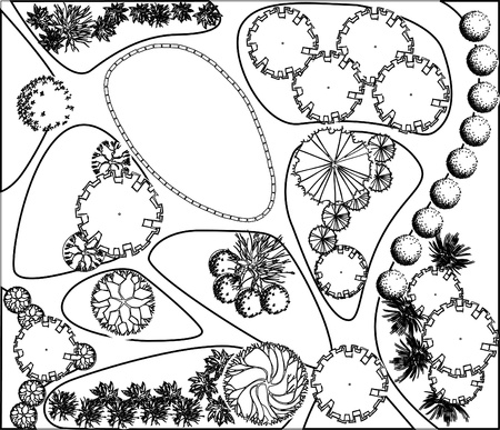 chippings: Plan of garden with plant symbols