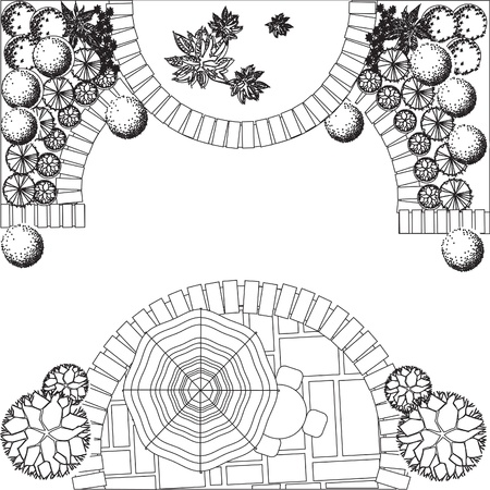 architect drawing: Plan of garden with plant symbols