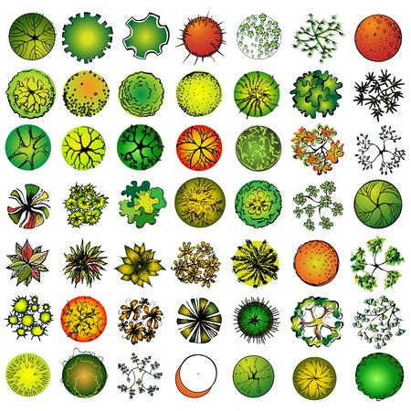 arbre paysage: A ensemble de symboles dans les arbres, pour architectural ou paysage design  Illustration