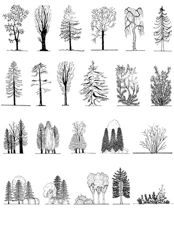 Een set van boom silhouetten, voor architecturale of landschaps ontwerp, zwart en wit