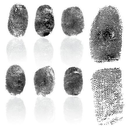 Set of fingerprints, vector illustration isolated on white Ilustração