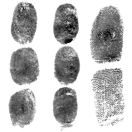 dedo: Conjunto de huellas dactilares, la ilustraci�n vectorial aislado en blanco Vectores