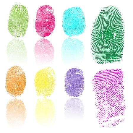 thumbprint: Set of colored fingerprints, vector illustration isolated on white