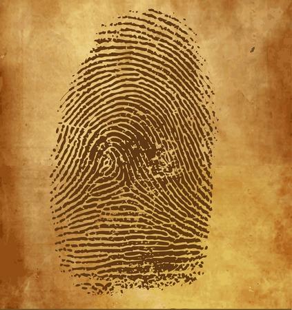 identification: Vintage background with vector fingerprint