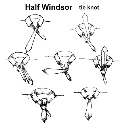 instruction: Vector tie and knot instruction, Half Windsor tie knot