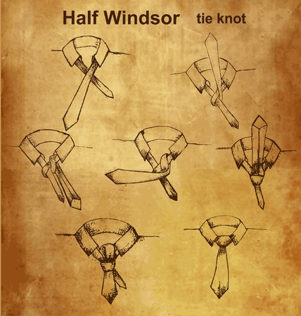 windsor: Vector tie and knot vintage instruction, Half Windsor tie knot