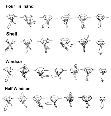 hand knot: Vector tie and knot instruction, shell, four in hand, windsor,half windsor Illustration
