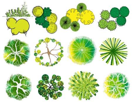 A conjunto de símbolos de árboles, para arquitectura o diseño del paisaje