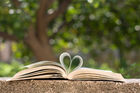 Book pages shaped like heart, in nature with tree bokeh. Archivio Fotografico