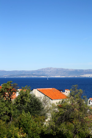 mediterranean house: Mediterranean house and plants in village Sutivan, Brac Island. Sea in the background.