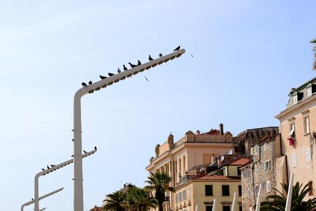 Waterfront in Split, Croatia. Split is popular touristic destination. Stock Photo