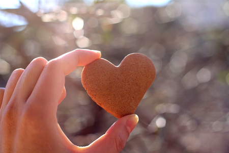 Hand holding heart-shaped gingerbread cookie. Selective focus, soft bokeh. Stock Photo