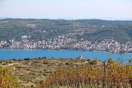 Beautiful vineyard on a hill above Trogir, Croatia during sunny day. View of Ciovo island. Selective focus.