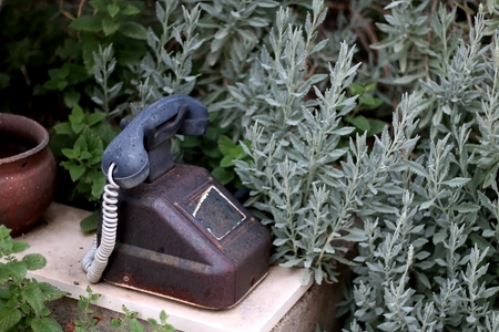 Vintage telephone set as decoration in a garden. Selective focus. Stock Photo