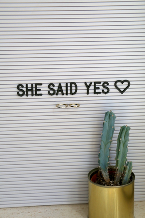 Bulletin board with wedding rings and love message, and cactus on a shelf. Wedding concept.