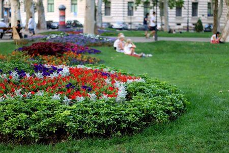 Flowers in beautiful Zrinjevac park in central Zagreb, Croatia.