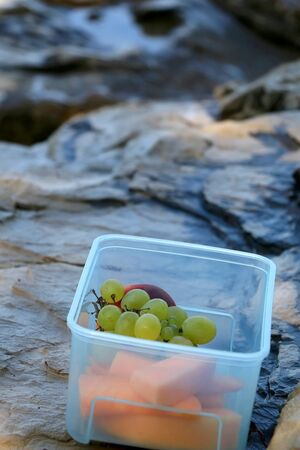 Plastic bowl of fruit (melon, peach, grapes) on the beach. Healthy summer snack. Selective focus, copy space. 스톡 콘텐츠