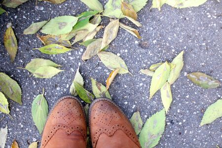 Brown vintage leather boots and fallen autumn leaves. Top view.