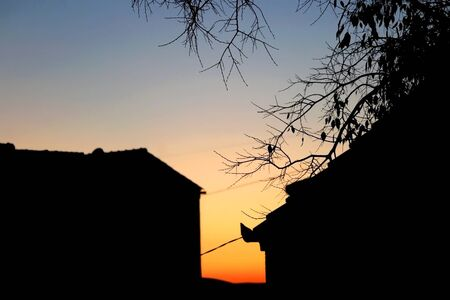 Silhouettes of houses and bare tree with beautiful sunset in the background.