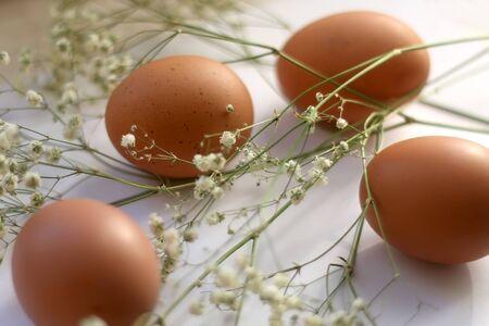 Free range eggs and gypsophila flowers on white background. Selective focus.