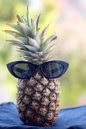 Pineapple with sunglasses. Selective focus, naturla green bokeh. Summer concept. Zdjęcie Seryjne - 143135415
