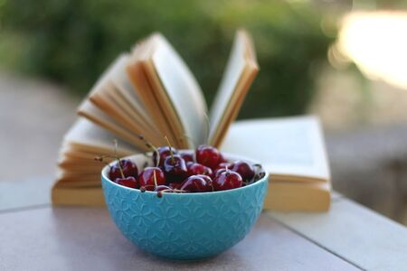 Bowl of cherries and open book on a table in a garden. Selective focus. Archivio Fotografico