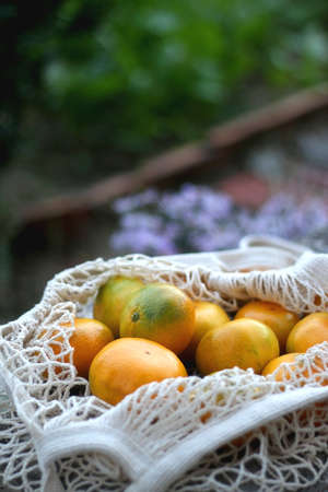 Bag filled with fresh tangerines in a garden. Selective focus.