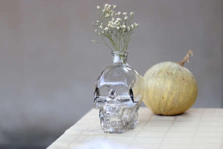 Skull shaped vase with gypsophila flowers and small pumpkin. Minimal Halloween decor. Selective focus.