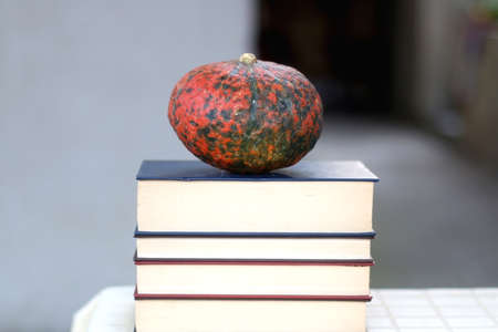 Stack of hardcover books and red kuri squash. Selective focus. Zdjęcie Seryjne
