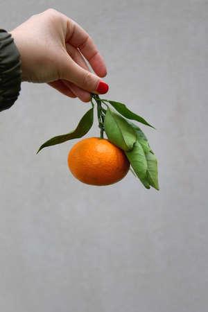 Hand holding a fresh tangerine. Selective focus, plain background.