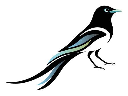 Magpie Illustration