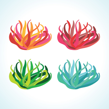 Isolated seaweed vecctor drawings in different color variations