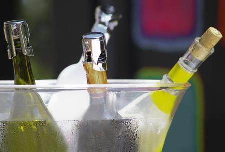 Four wine bottles in a bucket photo