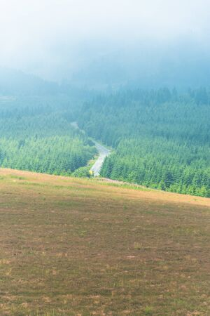 Aeriel view of morning summer meadow and curvy mountain asphalt road going through thick pine forest in front of high foggy mountain peak