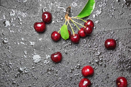 Fresh ripe cherries with leaves and water drops on black concrete background, copy space.