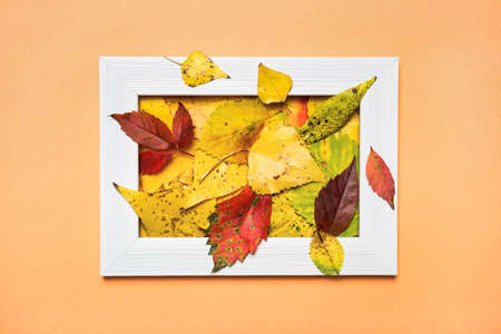Creative layout made of colorful autumn leaves and empty photo frame. Flat lay. Nature concept. 免版税图像