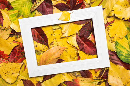 Autumn composition made of colorful leaves and blank photo frame. Autumn, fall concept. Flat lay, top view, copy space.
