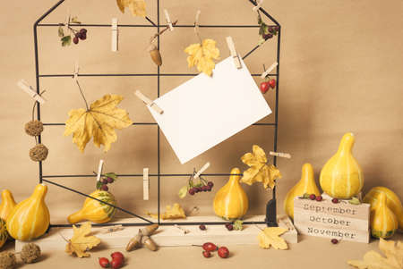 Autumn composition with dried leaves, berries, pumpkins and blank text label. Autumn, fall, winter concept. Standard-Bild