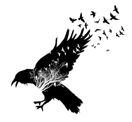 Raven double exposure. Illustration